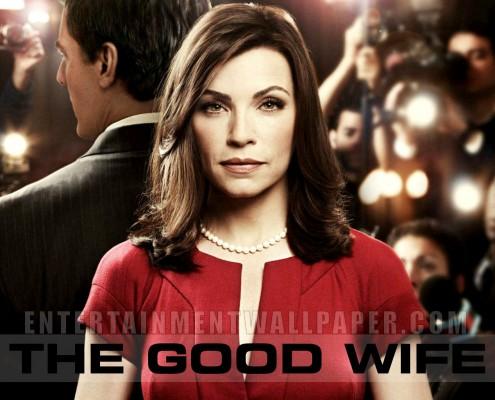 The Good Wife Dizisi