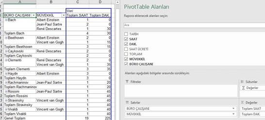 Excel Pivot Rapor - 5
