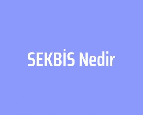 SEGBİS Nedir - 1