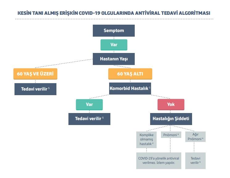 Yeni Tip Koronavirüs - 3